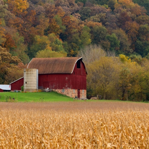 A barn in front of Autumn foliage.